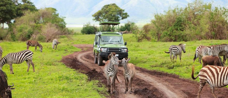Travel Review: Super-awesome Safari Tour in Tanzania