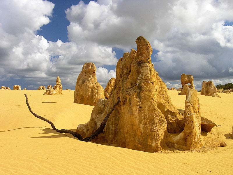 Enjoy The Real Luxury In One Of The Best Australia Tour Packages