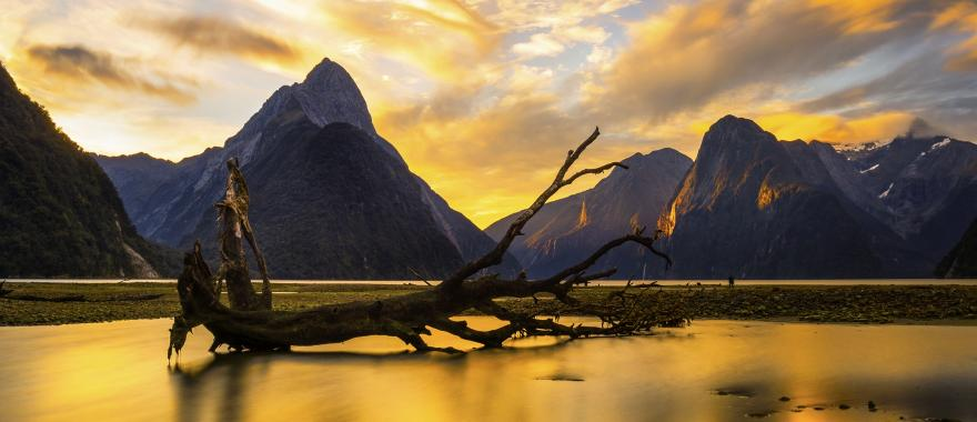 New Zealand: Explore The Land Of Mystery With This Tour Itinerary