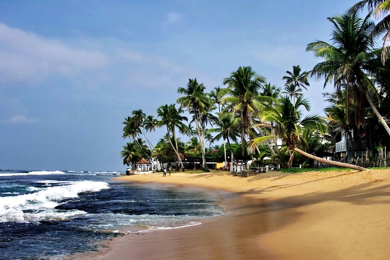 Best Sri Lanka Tour For A Quick Family Vacation