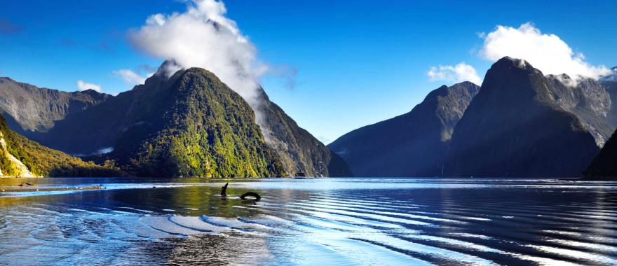 Experience the Majesty of North Island in this customized 7-Days New Zealand Tour