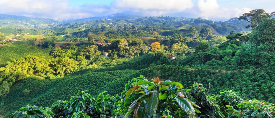Wonderful Costa Rica Tour