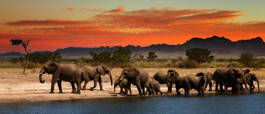 Wonderful Namibia Tour