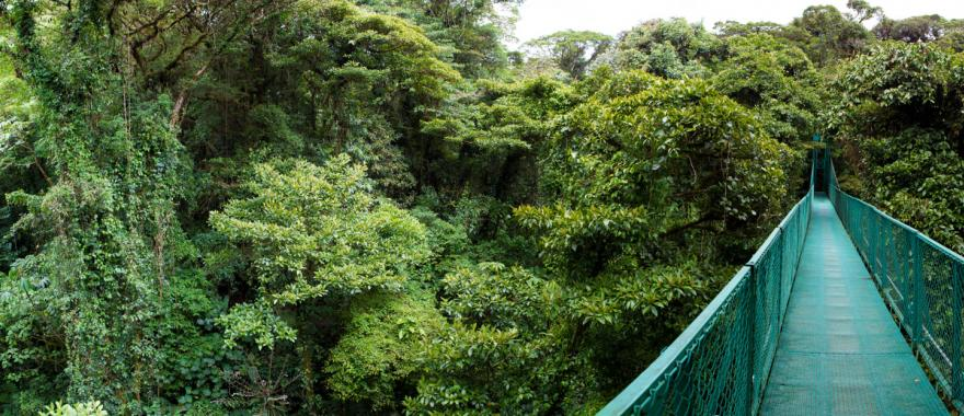 Wondering Where To Visit In Costa Rica? Here is Your Costa Rica Tour Itinerary