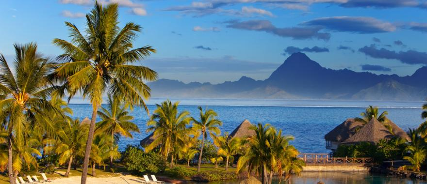 Highlights Of White Beach and Wilderness in Tahiti Holiday Deals & Vacation Specials