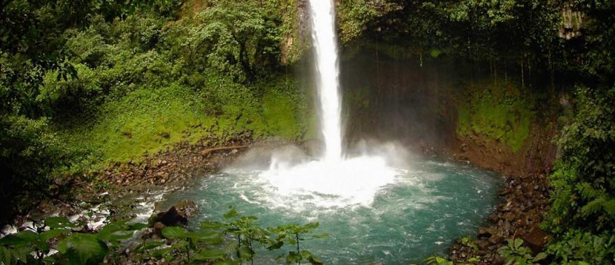 Explore Exotic Wildlife Of Costa Rica In Latin America Journey