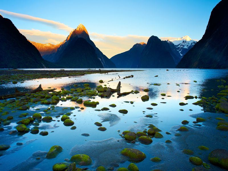 A Fascinating Trip To New Zealand