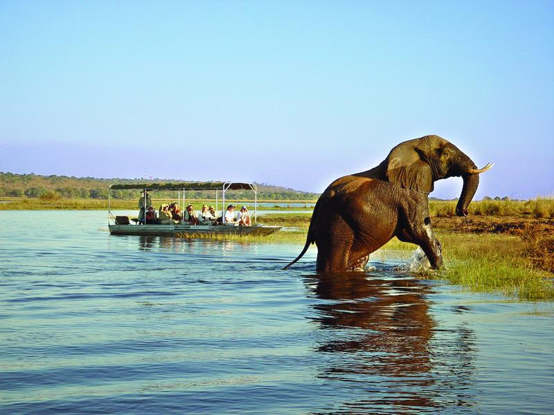 Unforgettable Experience of Zambia Safari Tour