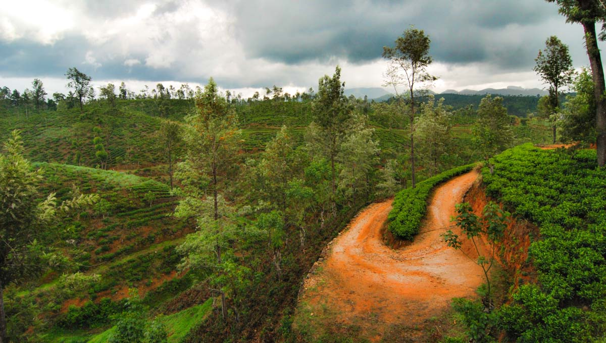 Best of Cheap Sri Lanka Tour Packages - 6-Days Itinerary!
