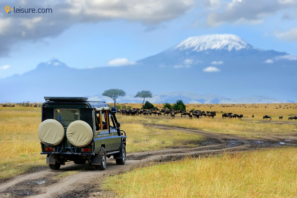 Escape the Crowd with this 8-Day Customized Kenya Safari Tour Package
