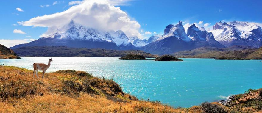 Latin America Adventure Travel - Enjoy Delectable Wine Adventure In Chile