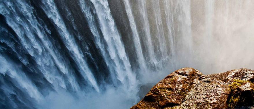 Unforgettable Safari Moments in Zimbabwe