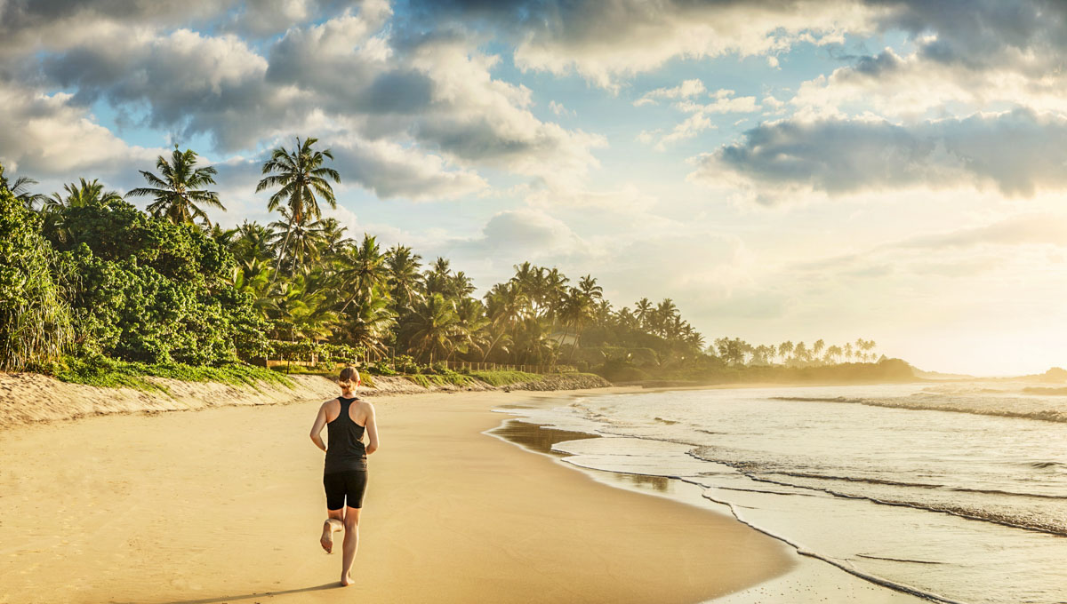 Sri Lanka Tour Package: Explore The South Coast of Sri Lanka With This Tour Itinerary