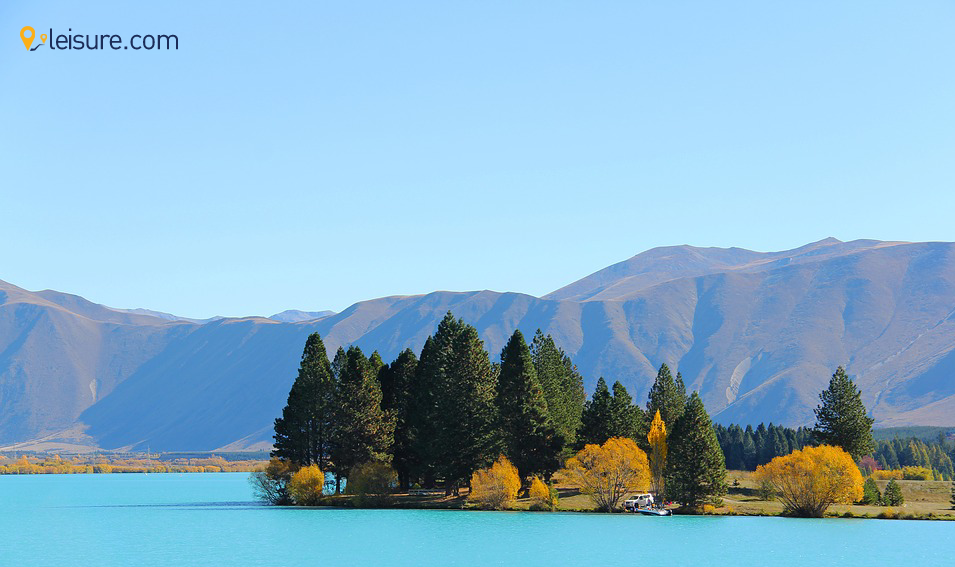 Guide for Solo Traveling to New Zealand