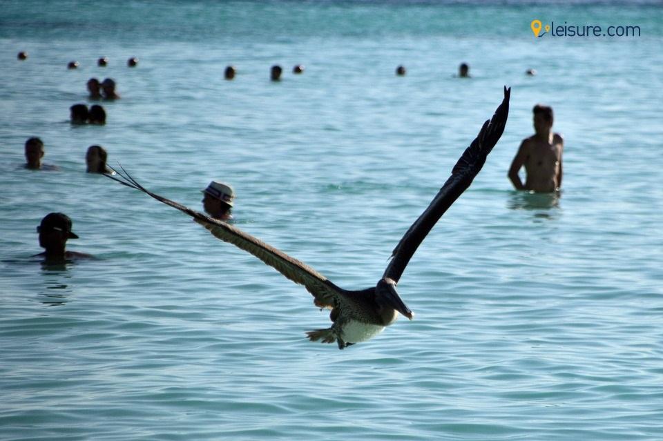 Cancun trip ss