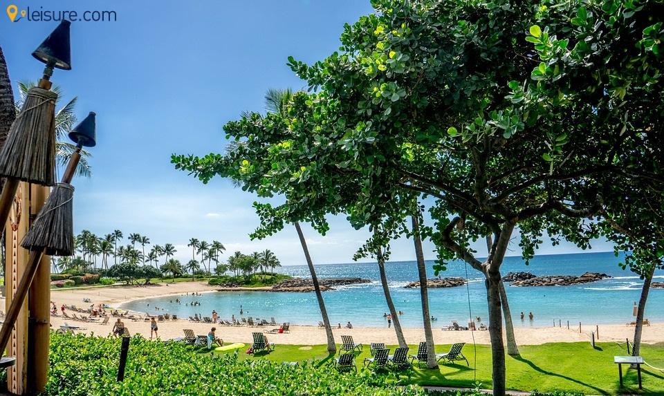 Hawaii sdd