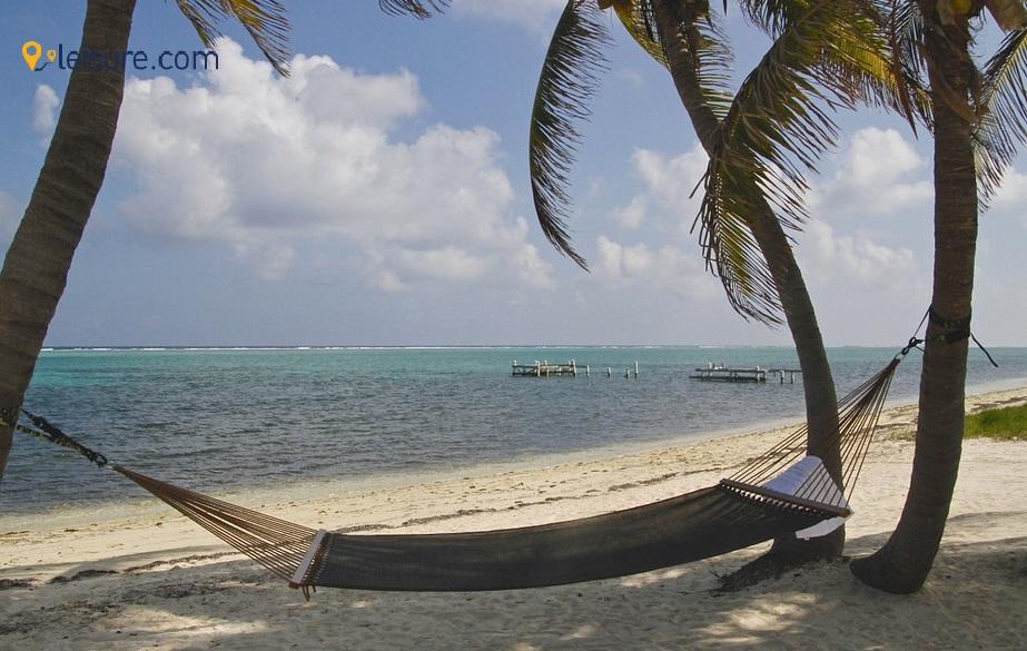Cayman fr