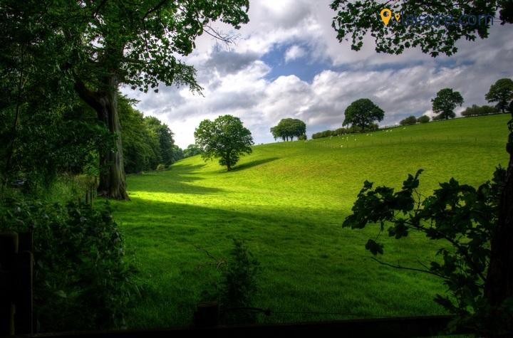 landscape o