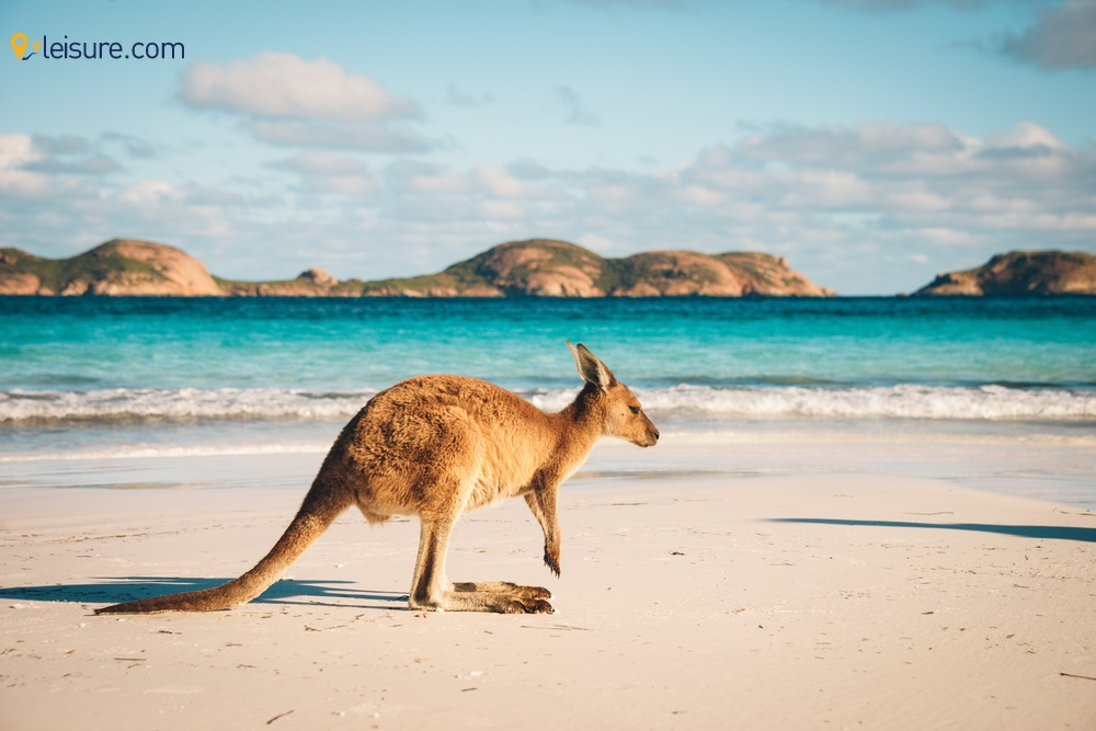 r Traveling To Australia